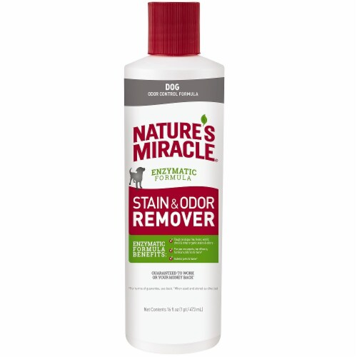 Nature's Miracle Dog Stain & Odor Remover Perspective: front