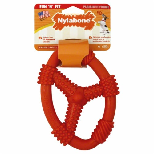 Nylabone Fun 'N' Fit Chicken Flavor Dog Toy Perspective: front