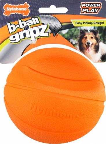 Nylabone Basketball Medium Dog Toy Perspective: front