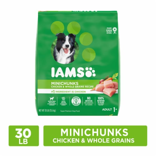 IAMS Minichunks Chicken & Whole Grains Recipe Dry Adult Dog Food Perspective: front