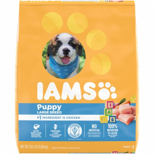 IAMS ProActive Health Smart Large Breed Dry Puppy Food Perspective: front