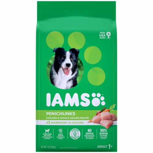 IAMS ProActive Health Minichunks Chicken Adult Dry Dog Food Perspective: front