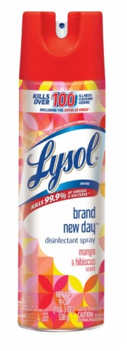 Lysol Brand New Day Mango & Hibiscus Scent Disinfectant Spray Perspective: front