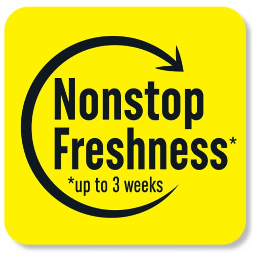 Renuzit After the Rain Gel Air Freshener Perspective: front