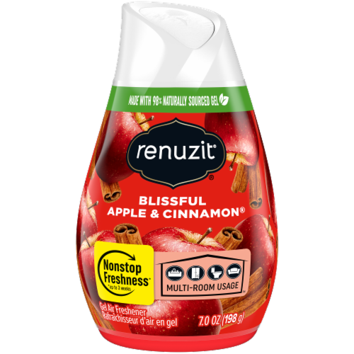 Renuzit Blissful Apple & Cinnamon Gel Air Freshener Perspective: front