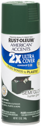 Rust-Oleum American Accents 2X Ultra Cover Semi-Gloss Spray Paint - Hunter Green Perspective: front