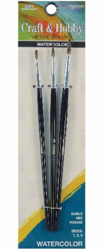 Pro Art Craft and Hobby Watercolor Brush Set Perspective: front