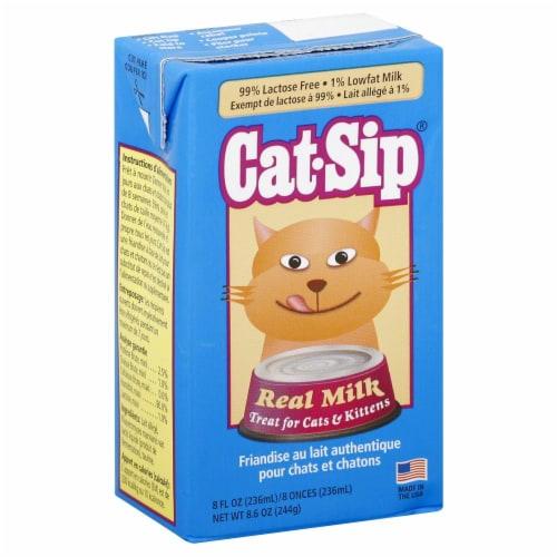 Cat-Sip Cat Real Milk Perspective: front