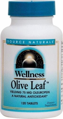 Source Naturals  Wellness Olive Leaf™ Perspective: front