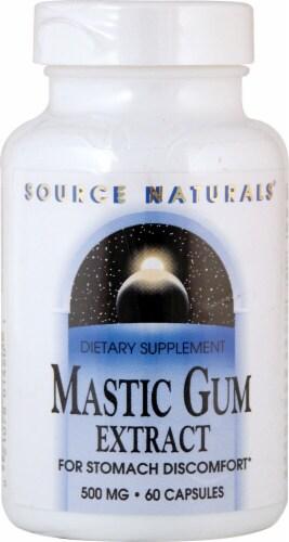 Source Naturals  Mastic Gum Extract Perspective: front