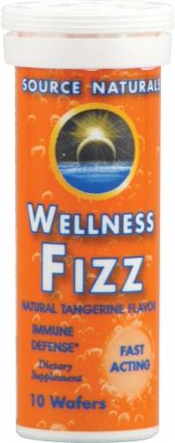 Source Naturals  Wellness Fizz™   Natural Tangerine Perspective: front