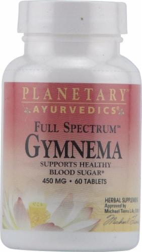 Planetary Herbals Ayurvedics® Full Spectrum™ Gymnema Tablets 450 mg Perspective: front