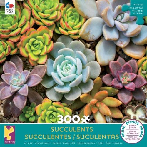 Ceaco Rosette Succulents Puzzle Perspective: front