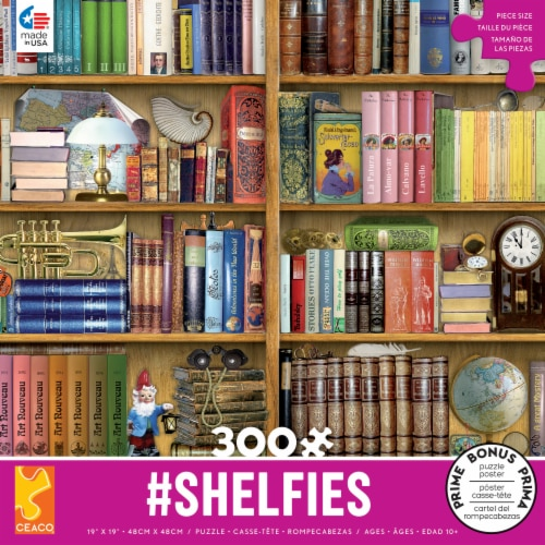 Ceaco Library Shelfies Puzzle Perspective: front