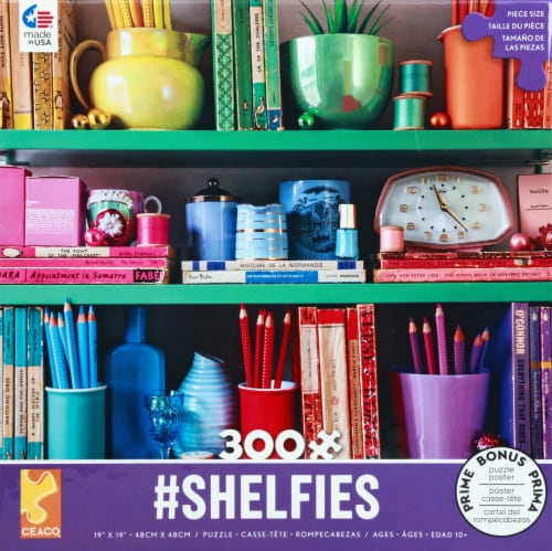Ceaco Rainbow Shelfies Assorted Puzzle 300 Pieces Perspective: front