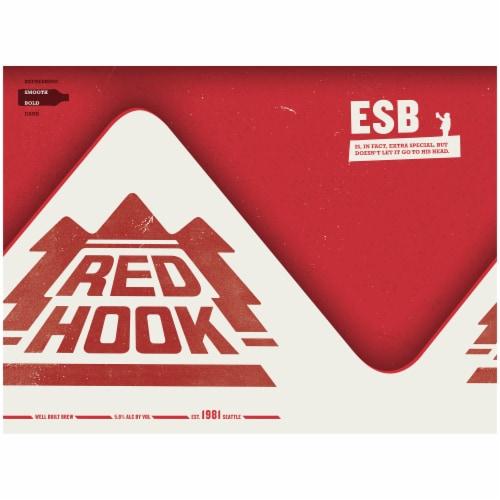Redhook ESB Original Ale Perspective: front