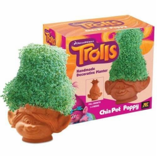 Chia Pet® DreamWorks Trolls Poppy Decorative Planter - Brown Perspective: front