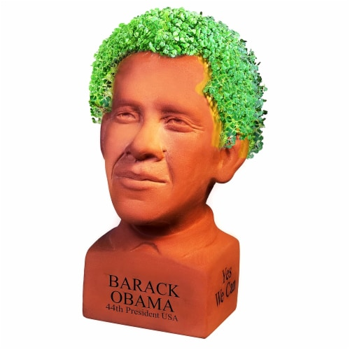 Chia Pet Planter -Freedom of Choice Obama - Determined Pose Perspective: front