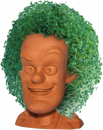 Chia Pet Planter - Back to the Future-  Doc Brown Perspective: front