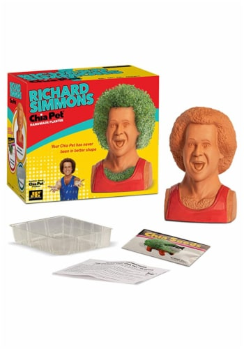 Chia Pet Planter - Richard Simmons Perspective: front