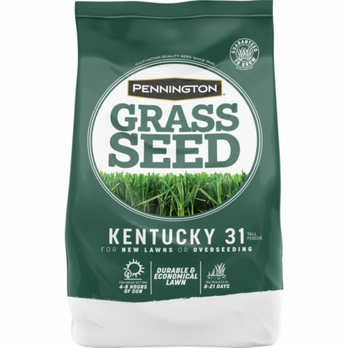 Pennington Seed Kentucky 31 Tall Fescue Full Sun/Medium Shade Grass Seed 5 lb. - Case Of: 1; Perspective: front