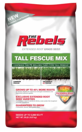 Pennington Seed The Rebels Tall Fescue Sun/Shade Grass Seed 20 lb. - Case Of: 1; Perspective: front