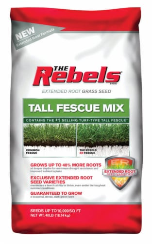 Pennington Seed The Rebels Tall Fescue Sun/Shade Grass Seed 40 lb. - Case Of: 1; Perspective: front