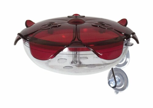 Droll Yankees Ruby Sipper Hummingbird 5 oz. Polycarbonate Window Mount Nectar Feeder 3 ports Perspective: front