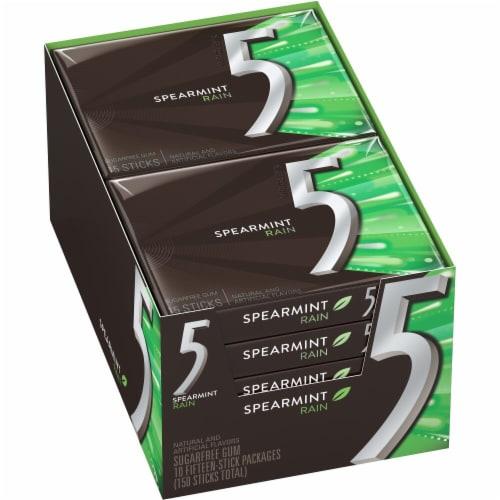5 Gum Spearmint Rain Sugarfree Gum (10 Pack) Perspective: front