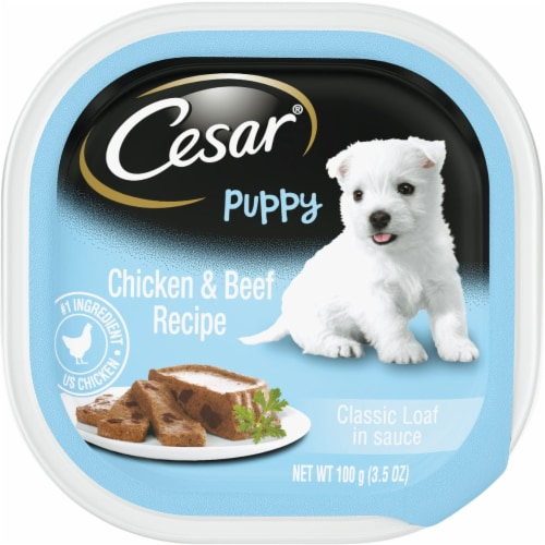 Cesar Puppy Classic Loaf in Sauce Chicken & Beef Recipe Wet Dog Food Perspective: front