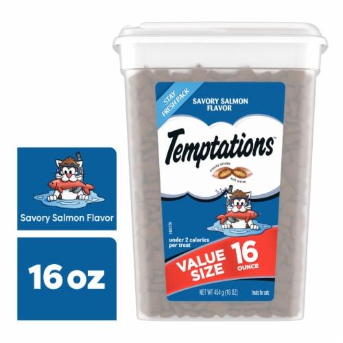 Temptations Savory Salmon Flavor Cat Treats Tub Perspective: front