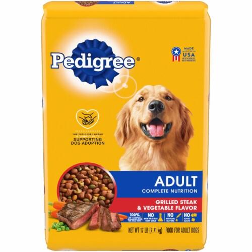 Pedigree Adult Complete Nutrition Grilled Steak & Vegetable Flavor Dry Dog Food Perspective: front