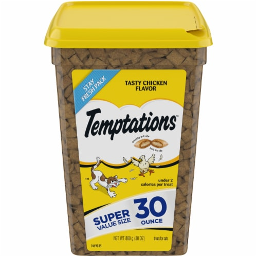 Temptations Tasty Chicken Flavor Cat Treats Tub Perspective: front