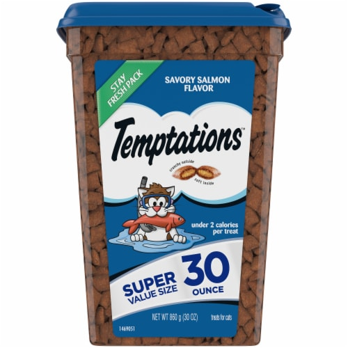 Temptations Savory Salmon Flavor Cat Treats Perspective: front