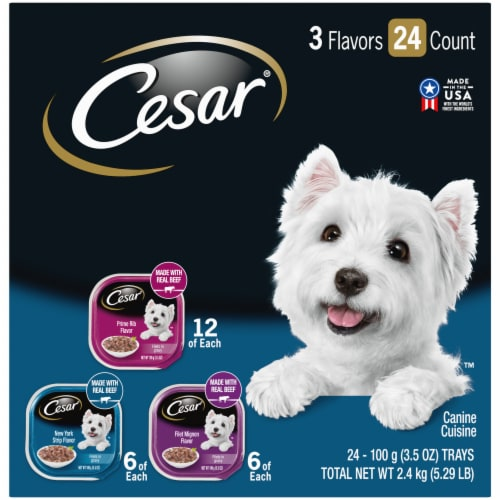 Cesar Filets in Gravy Wet Dog Food Variety Pack Perspective: front