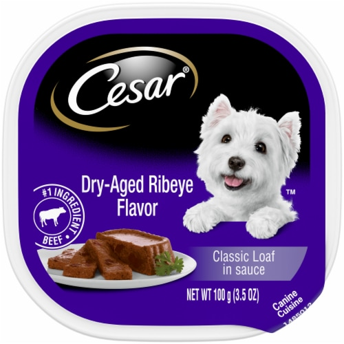 Cesar Dry-Aged Ribeye Flavored Classic Loaf in Sauce Wet Dog Food Perspective: front