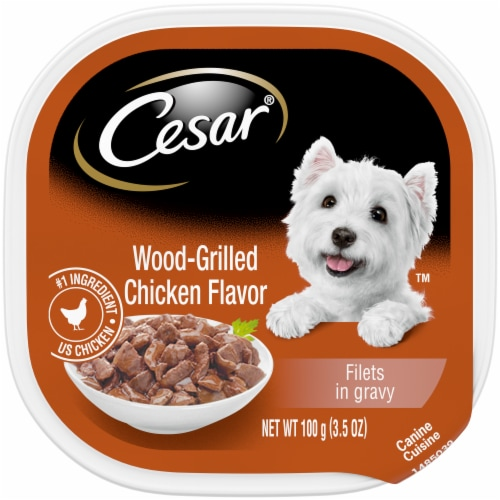 Cesar Wood-Grilled Chicken Flavor Wet Dog Food Perspective: front