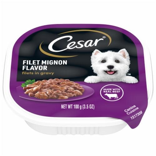 Cesar Filets in Gravy Filet Mignon Flavor Wet Dog Food Perspective: front
