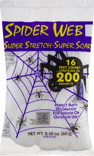 Fun World Spider Webs Decoration Perspective: front