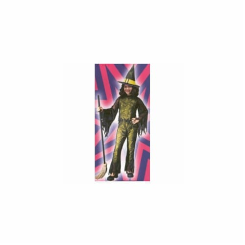 Costumes For All Occasions FW8753GRLG Funky Witch Green Child Lrg Perspective: front