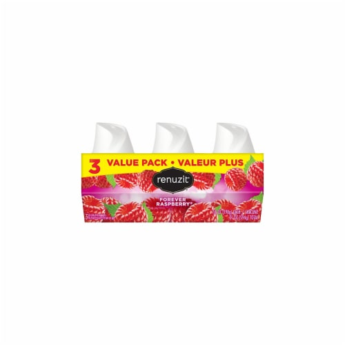 Renuzit® Forever Raspberry® Gel Air Fresheners Perspective: front