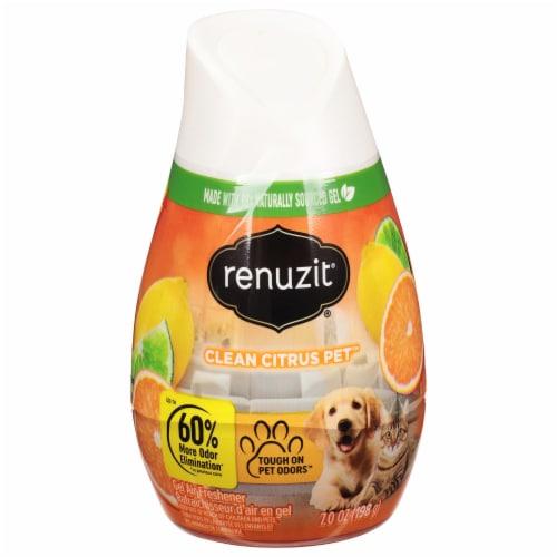Renuzit Super Odor Neutralizer Clean Citrus Gel Air Freshener Perspective: front