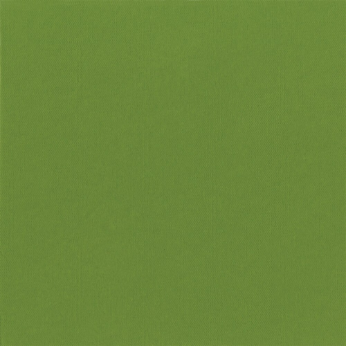 Caspari Moss Green Paper Linen Luncheon Napkins Perspective: front