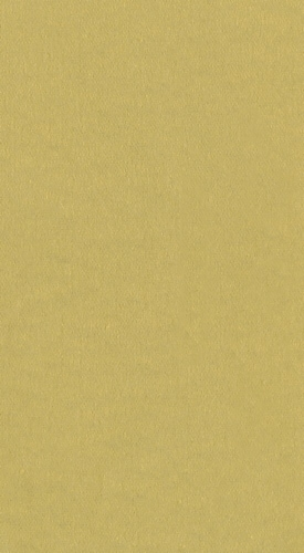 Caspari  Paper Linen Guest Hand Paper Towel Napkin Gold Perspective: front