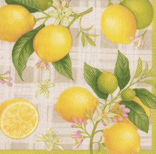 Caspari Paper Cocktail Napkins - Citron Perspective: front