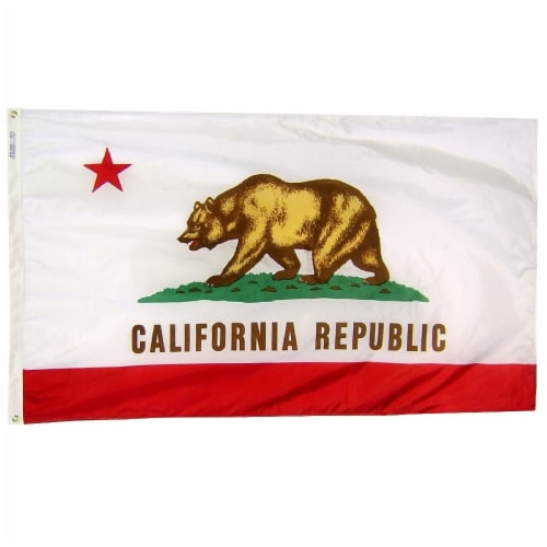 Annin Flagmakers California State Flag Perspective: front