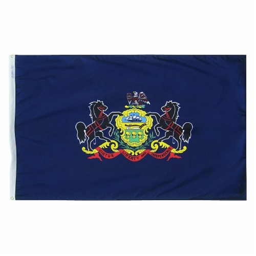 Annin Flags Nylon SolarGuard Pennsylvania State Flag Perspective: front