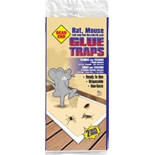 Atlantic Paste & Glue 2460 Glue Rat & Mouse Trap Dead End  2 Pack -  Pack of 24 Perspective: front