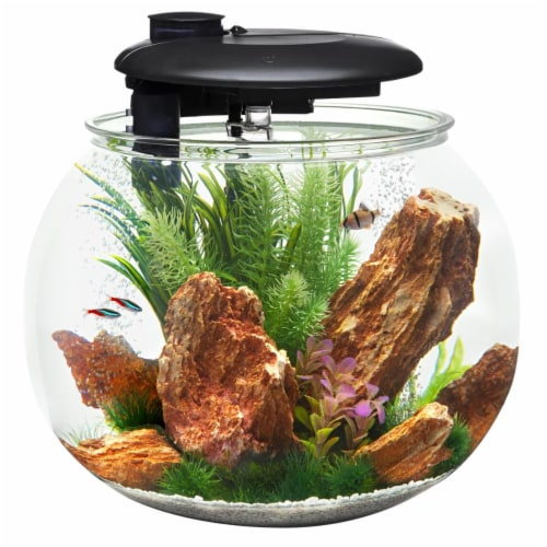 Penn-Plax AquaSphere 360 Bowl-Shaped Aquarium Integrated Filtration System & LED - 24 Gallons Perspective: front