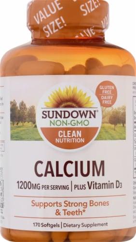 Sundown Naturals Calcium 1200 mg Plus Vitamin D3 Softgels Perspective: front